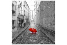 0019.01-F (купон 0,75х0,75) Париж зонт